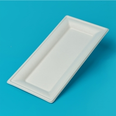 10*5 inch square plate